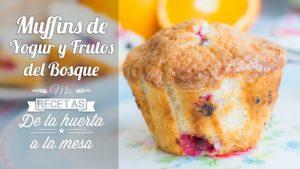 Muffins de Yogur y Frutos del Bosque